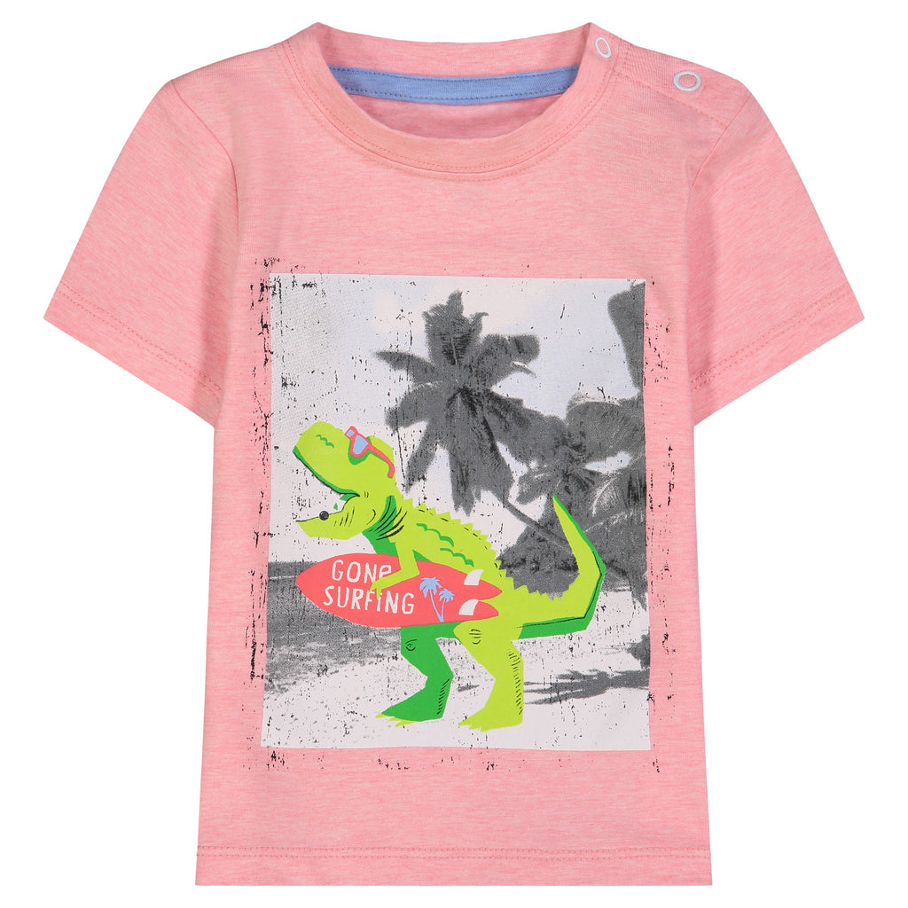 Infant Boys Surfing Dino Graphic Tee Set - Andy & Evan