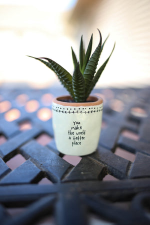 You Make the World a Better Place Faux Succulent
