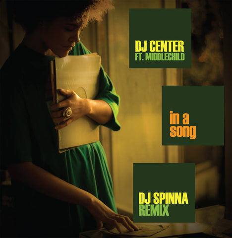 "DJ Center - In A Song, 12"" LP Vinyl"