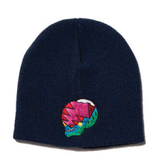 The Quiet Life - Herndon Skull Beanie, Black - The Giant Peach