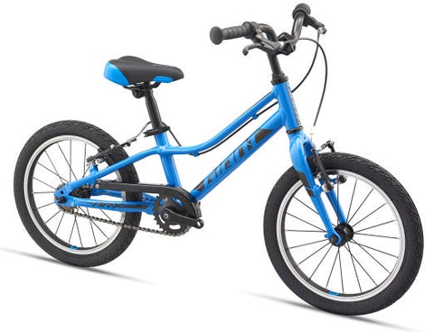 Giant ARX 16 Kid's Bike