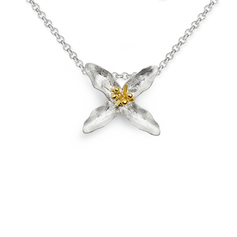 Be Always Blooming Necklace (17)