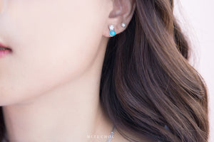 Load image into Gallery viewer, Rich in Bliss Turquoise Earrings