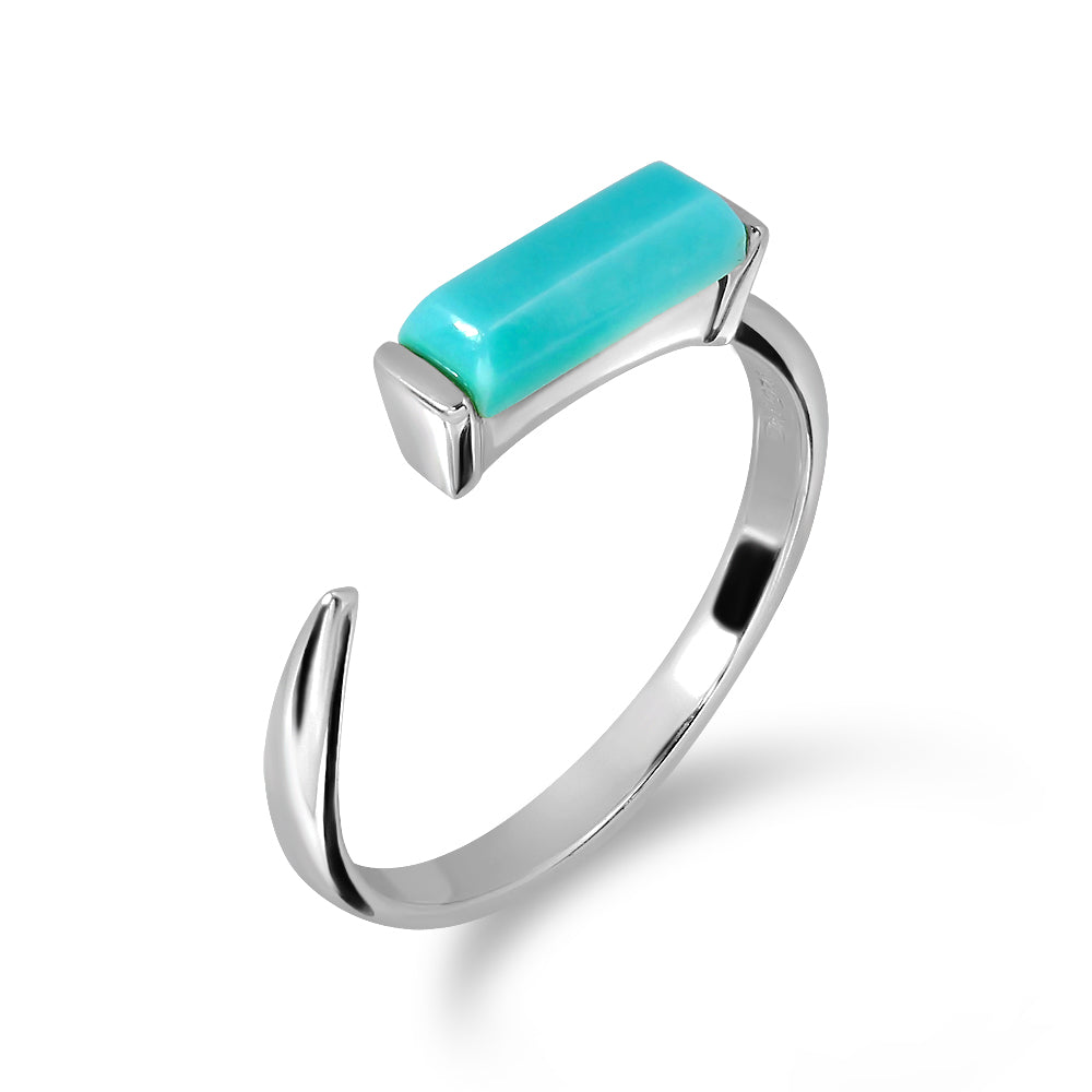 Turquoise Canvas Ring - RD