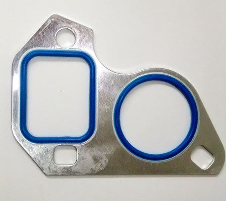 BTR LS Water Pump Gasket