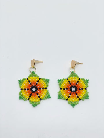 Postureo Spiderweb Earrings