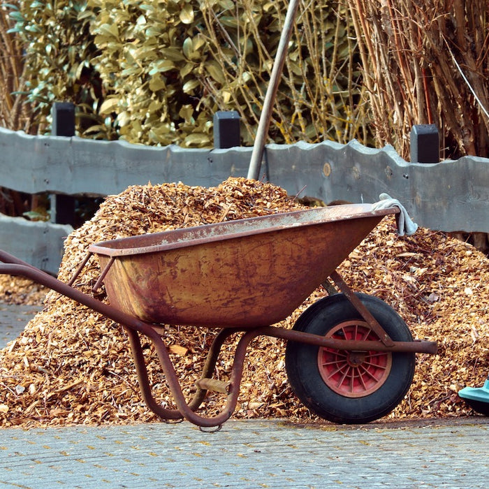 6 Easy Ways to Prepare Your Garden for Winter