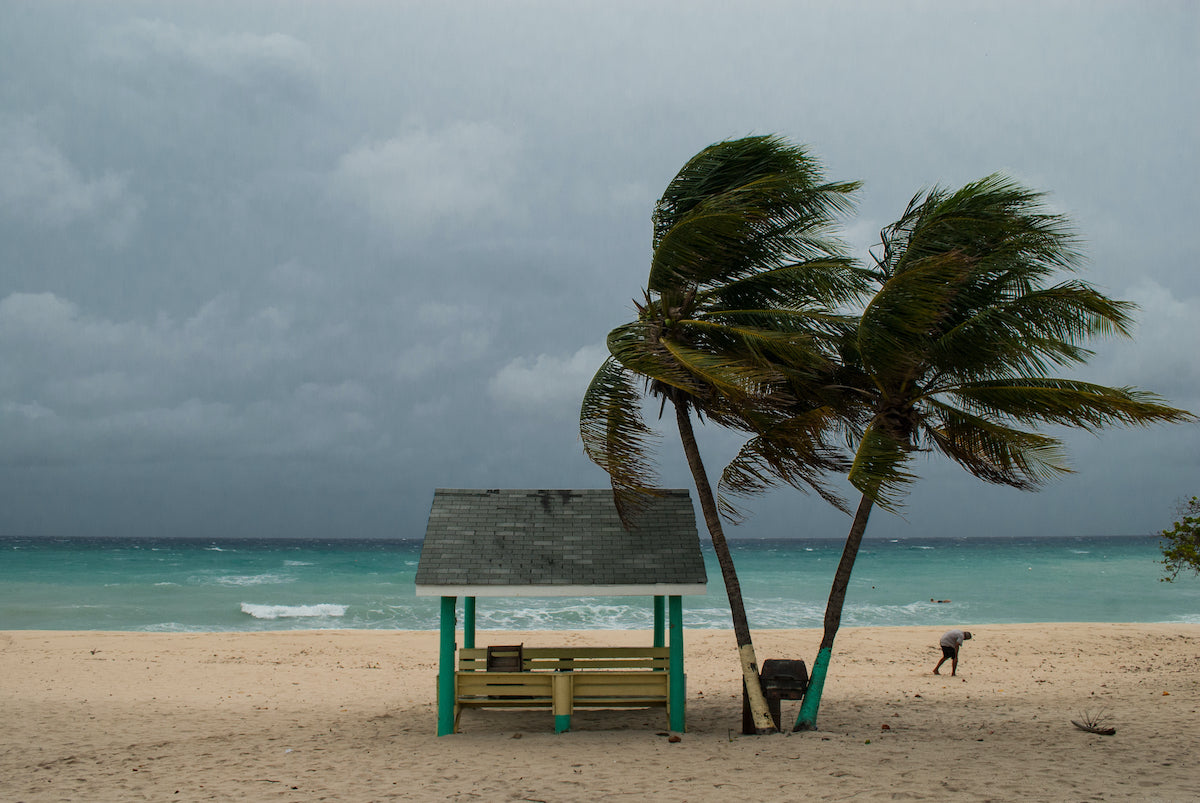 How to Prepare Your Home and Family for Hurricane Season