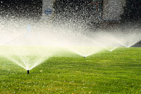 Spring Maintenance Tip #10 Image: Test Your Sprinkler System