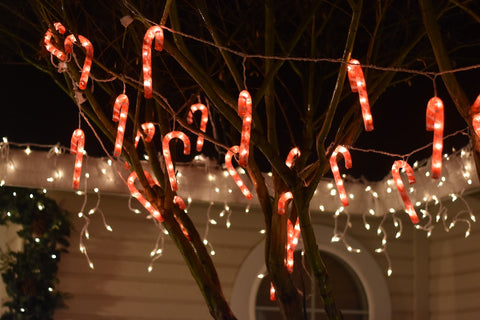 Tip #2: Holiday Lighting