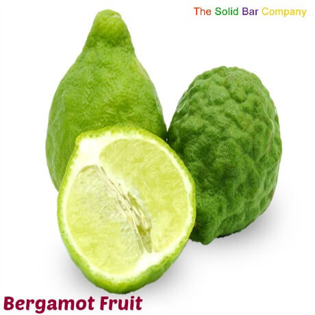 Bergamot fruit source of the essential oil bergamot used in shampoos by The Solid Bar Company