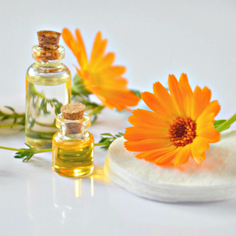 Calendula Essential Oil a key ingredient in the Nappy Change Cream