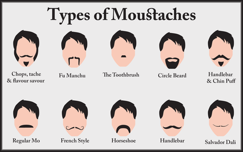 Types of Moustaches