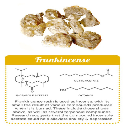 The many therapeutic uses for frankincense in all its natural forms
