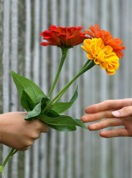 Hand presenting flowers