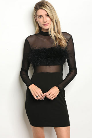 Black Sheer Feather Dress