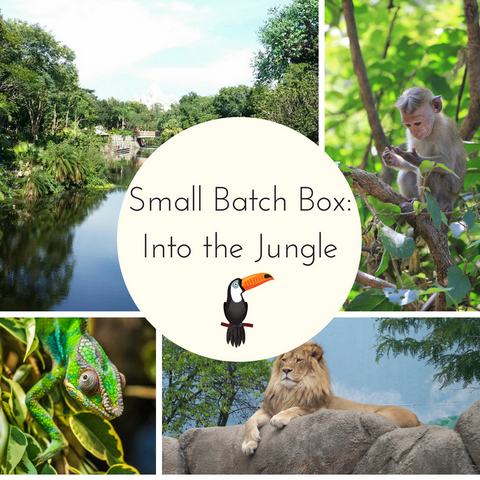 Into the Jungle Small Batch Countdown Box - Deposit