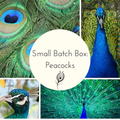 Peacock Small Batch Countdown Box - Complete Payment