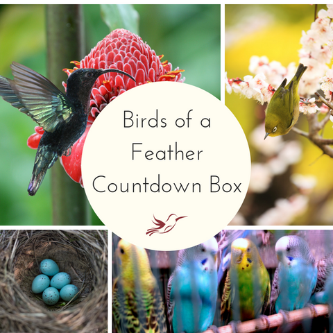 Birds of a Feather Small Batch Countdown Box - Deposit