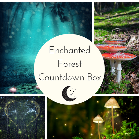 Enchanted Forest Small Batch Countdown Box - Deposit