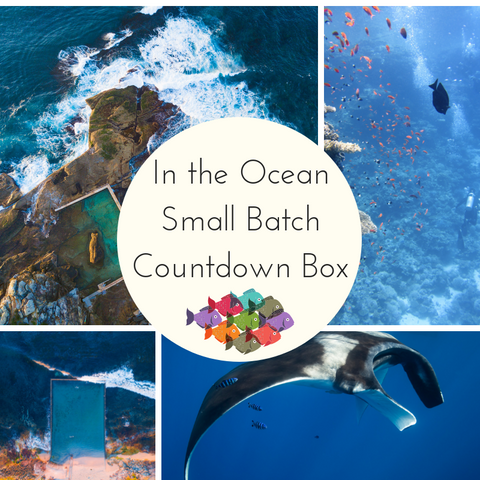 In the Ocean Small Batch Countdown Box - Deposit
