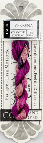Verbena - NEW Cottage Garden Threads Forage Collection