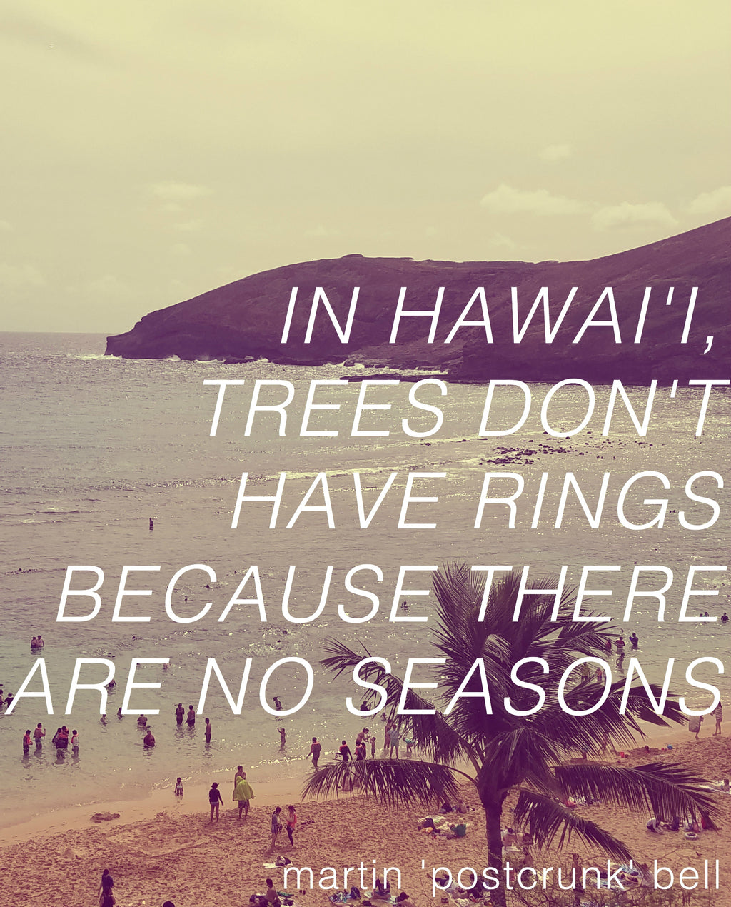 In Hawai'i, Trees Don't Have Rings Because There Are No Seasons (digital download)