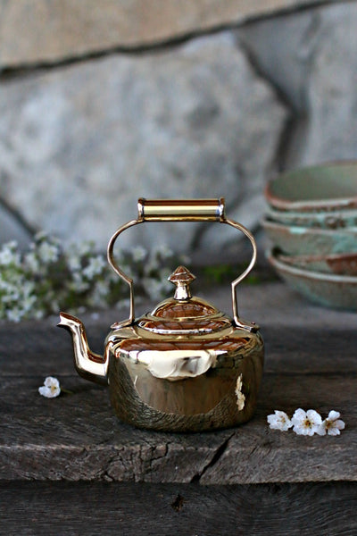 Vintage English Brass Kettle | c. 1880