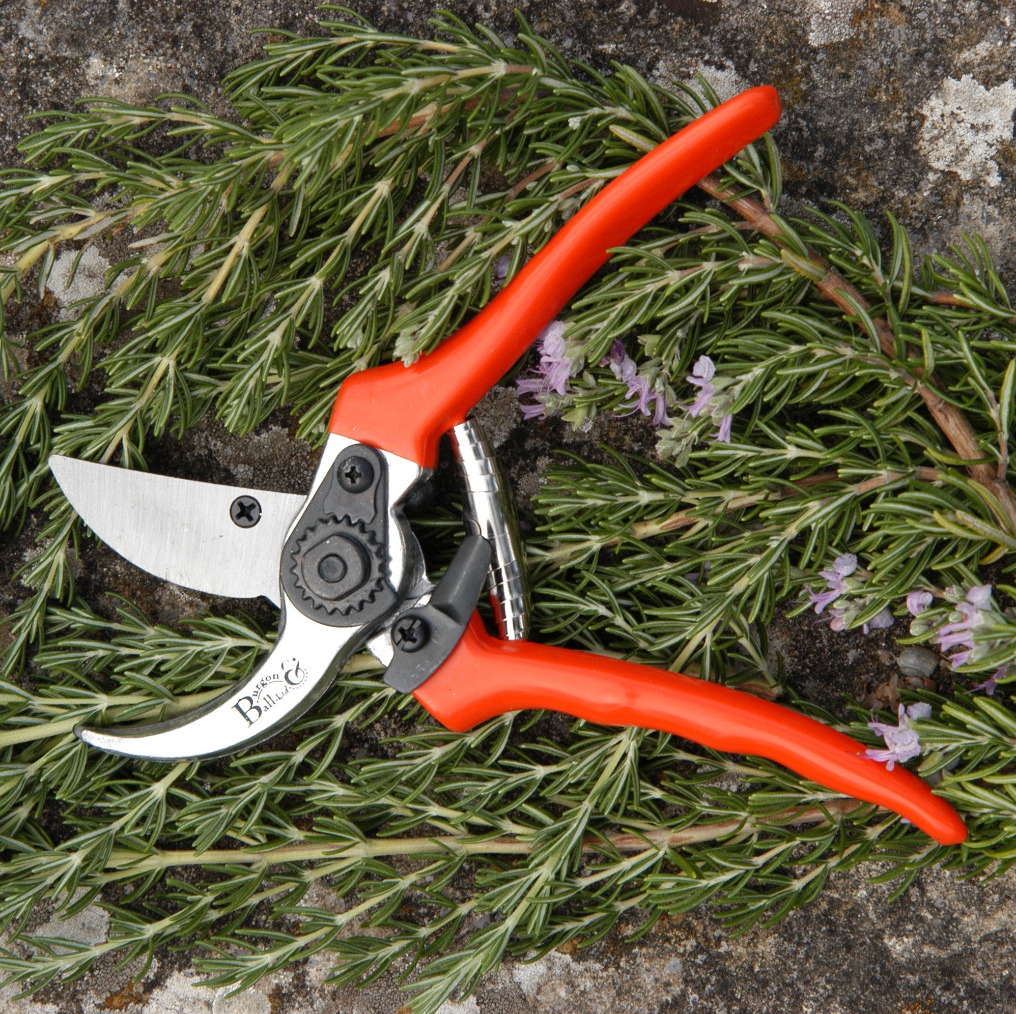 Bypass Secateurs - RHS Endorsed - The Potting Shed Garden Tools