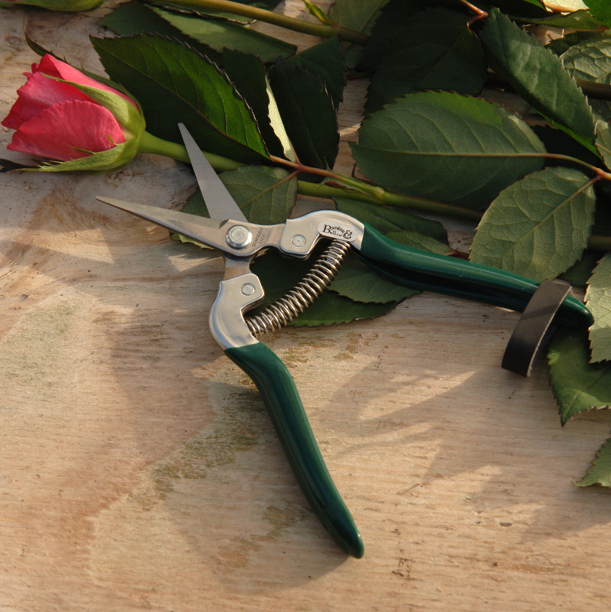 Flower & Fruit Snip - RHS Endorsed - The Potting Shed Garden Tools