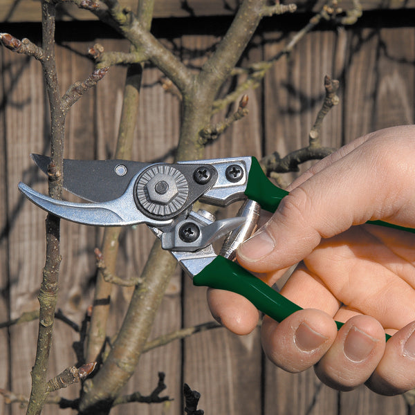 Pocket Pruner - RHS Endorsed - The Potting Shed Garden Tools