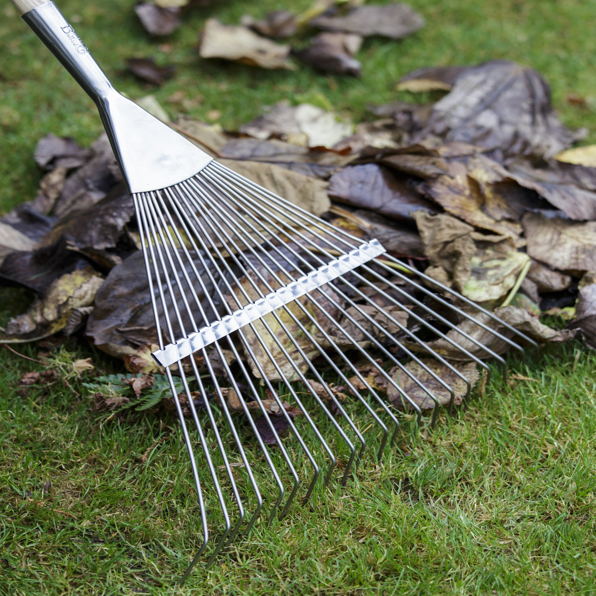 Flexi Tined Lawn Rake - Stainless Steel
