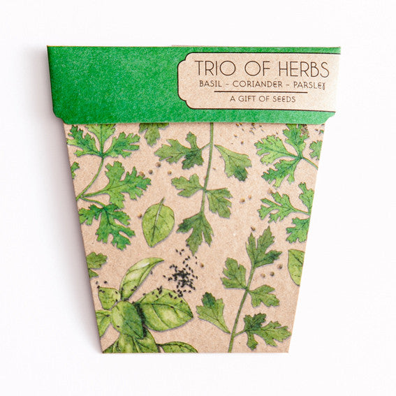 Trio of Herbs Gift of Seeds Card - The Potting Shed Garden Tools