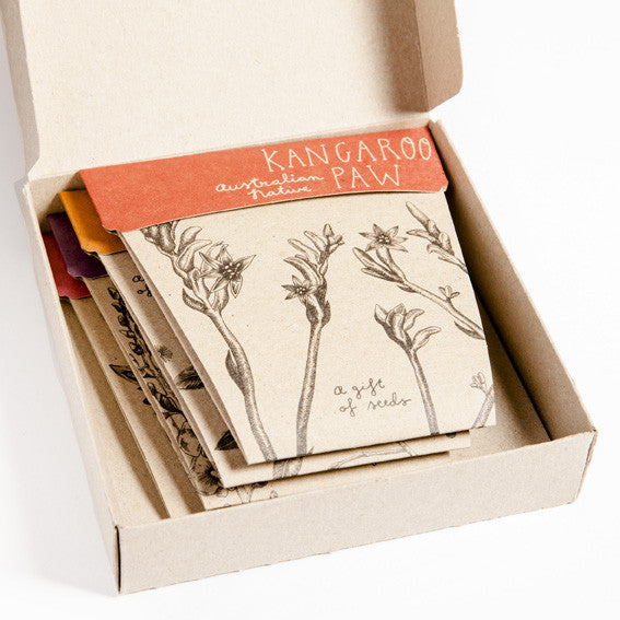 Australian Native Gift of Seeds Box Set - Set of 4 Cards & Envelopes - The Potting Shed Garden Tools
