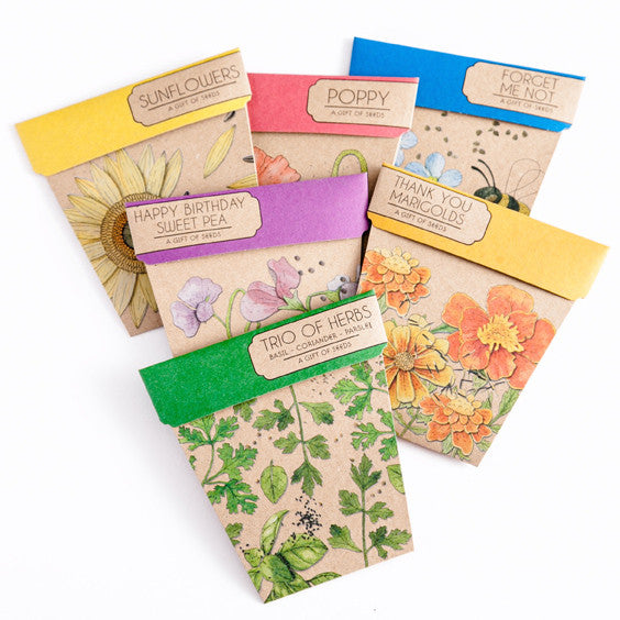 Gift of Seeds Box Set Collection - Set of 6 Cards & Envelopes - The Potting Shed Garden Tools