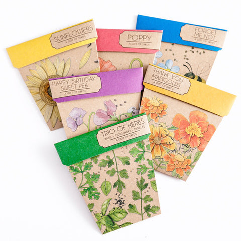 Gift Of Seeds Cards - The Potting Shed Garden Tools