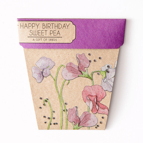 Sweet Pea Gift of Seeds Card - The Potting Shed Garden Tools