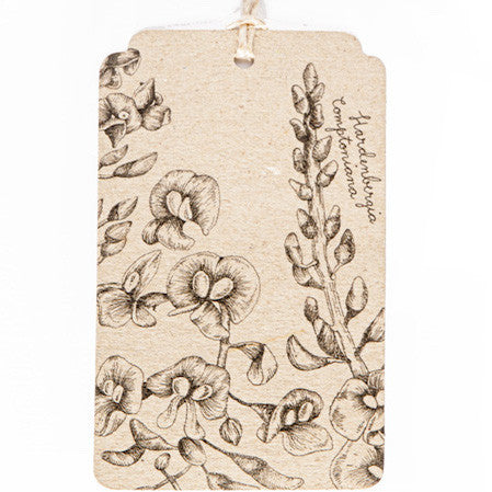 Native Wisteria Gift Tag - The Potting Shed Garden Tools