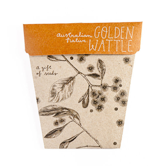 Golden Wattle Gift of Seeds Card - The Potting Shed Garden Tools
