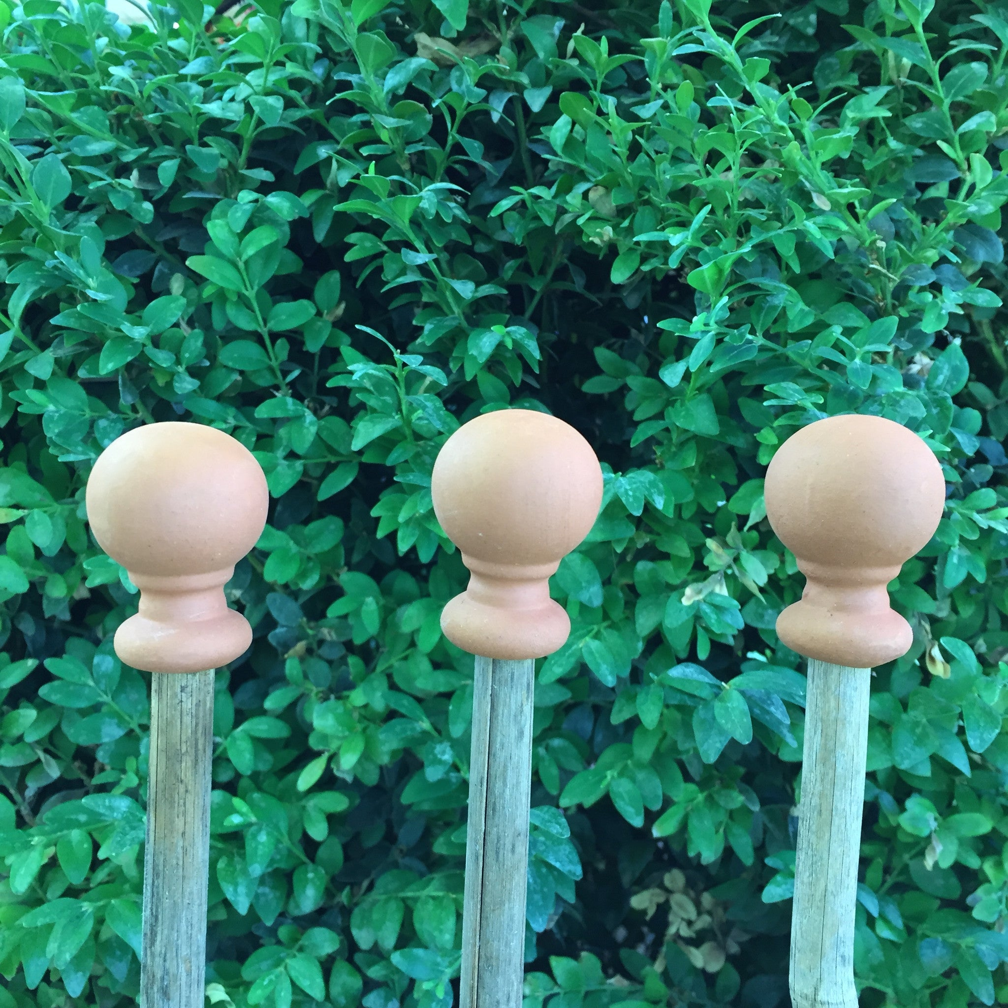 Terracotta Cane Topper Set - Ball - The Potting Shed Garden Tools