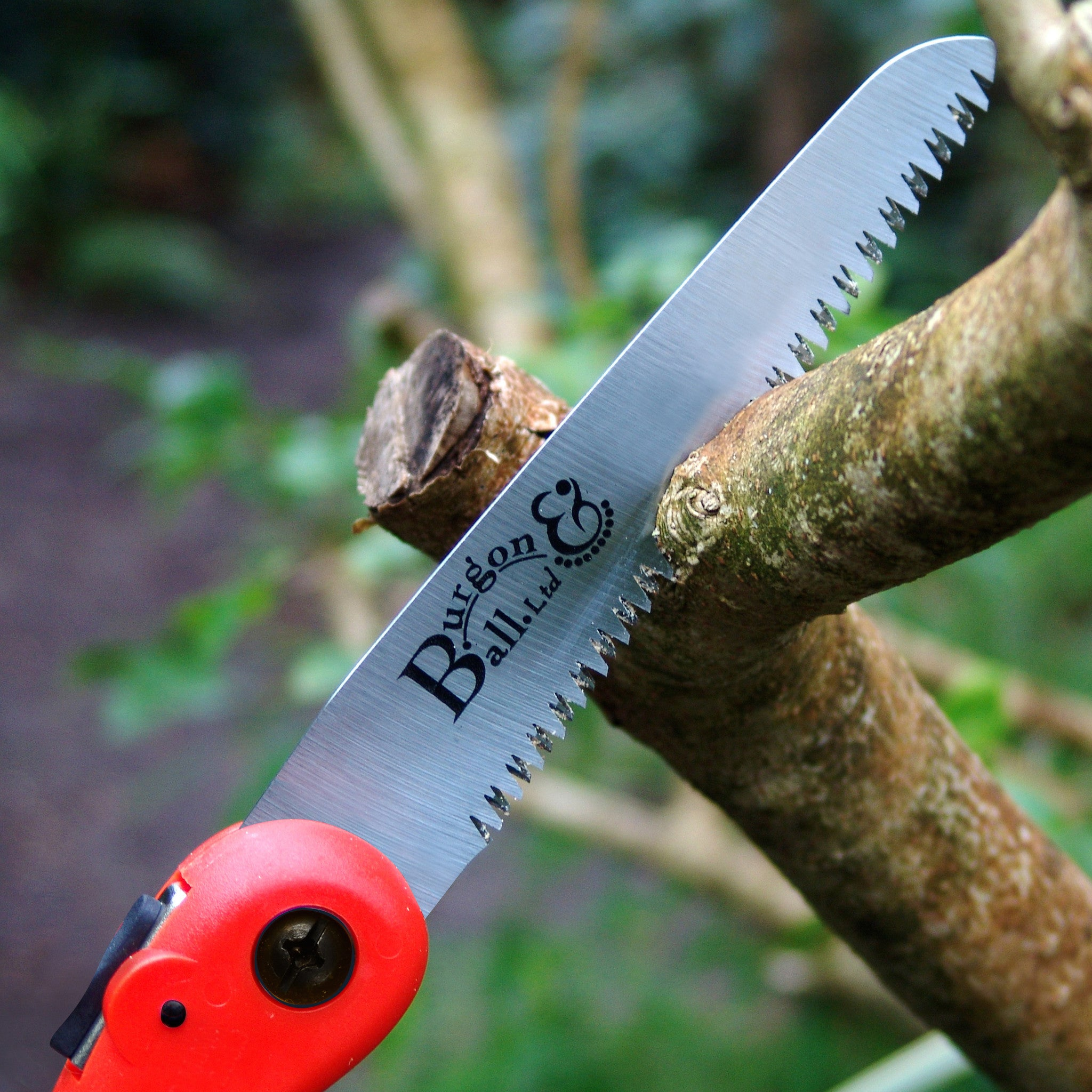 Folding Pruning Saw - RHS Endorsed - The Potting Shed Garden Tools