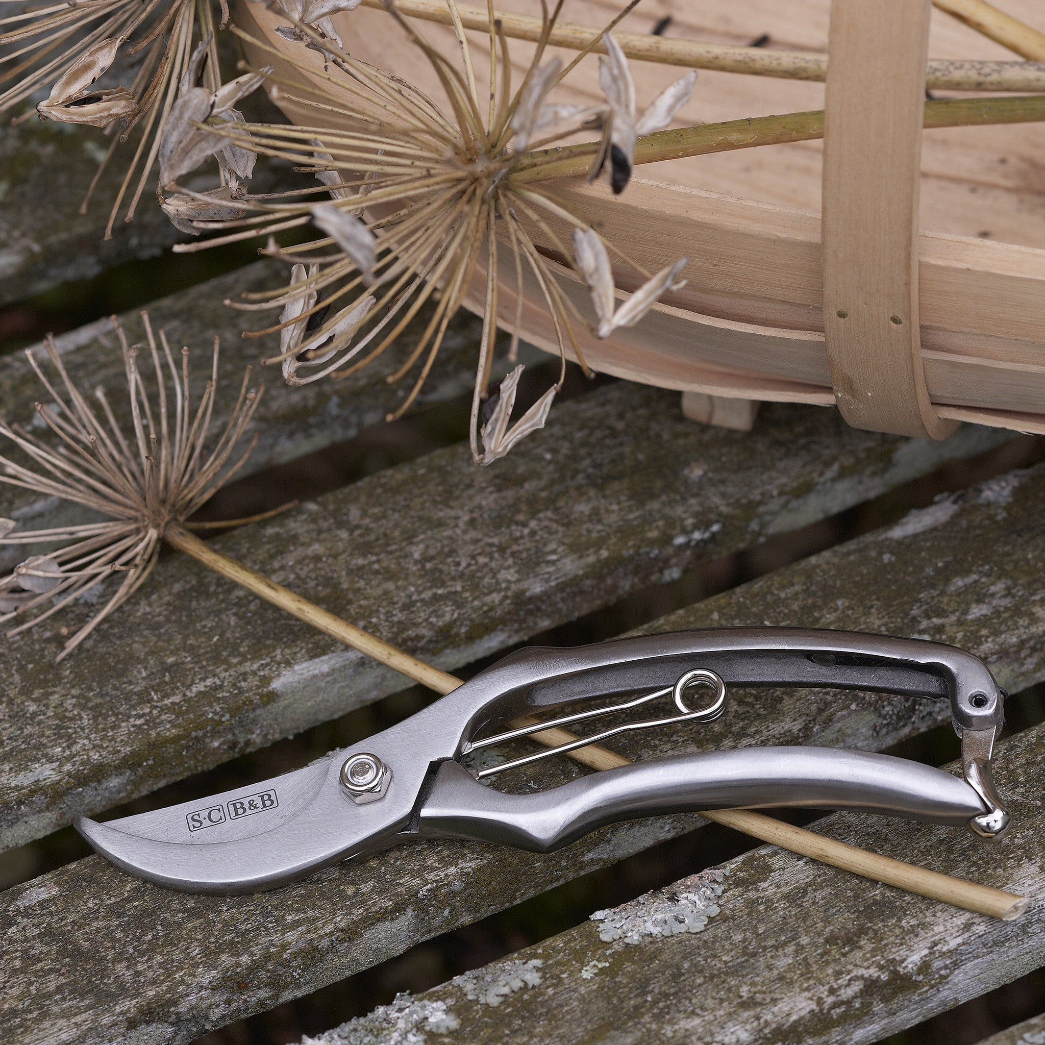 Secateurs - Gift Boxed - Sophie Conran - The Potting Shed Garden Tools