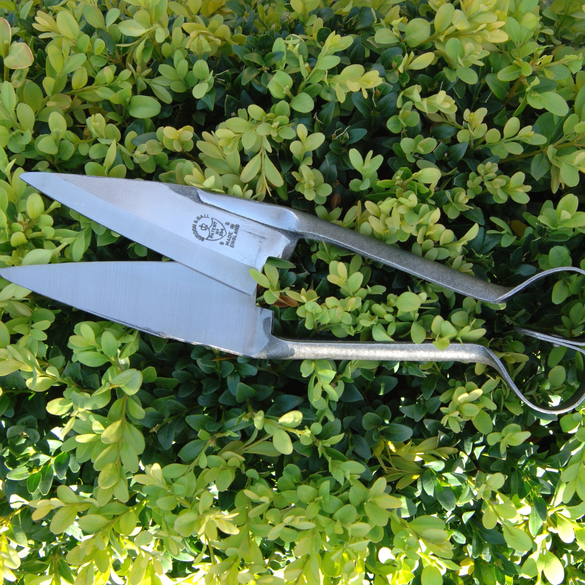 Topiary Shears - Small Professional Soft Squeeze - The Potting Shed Garden Tools