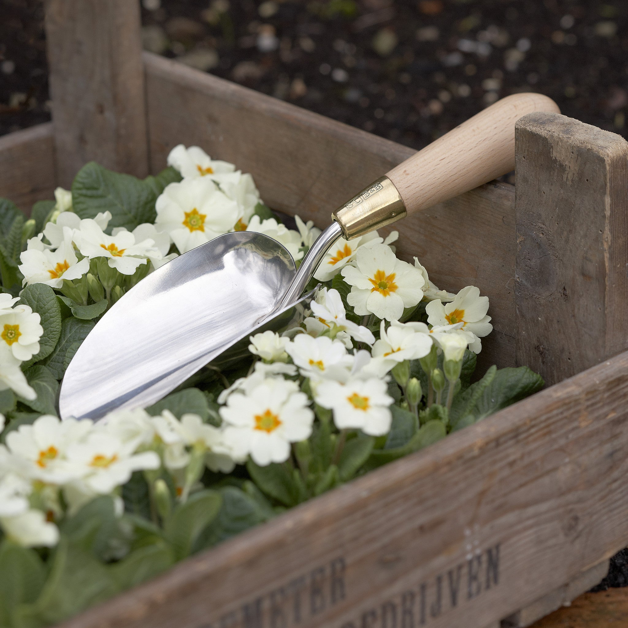 Trowel - Gift Boxed - Sophie Conran - The Potting Shed Garden Tools