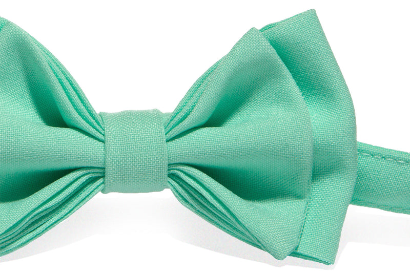 Tan Leather Suspenders & Mint Bow Tie
