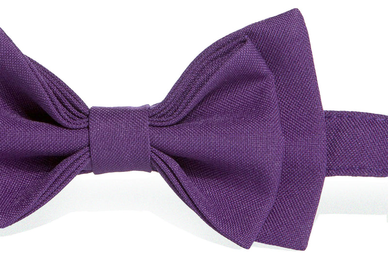 Eggplant Purple Suspenders & Dark Purple Bow Tie