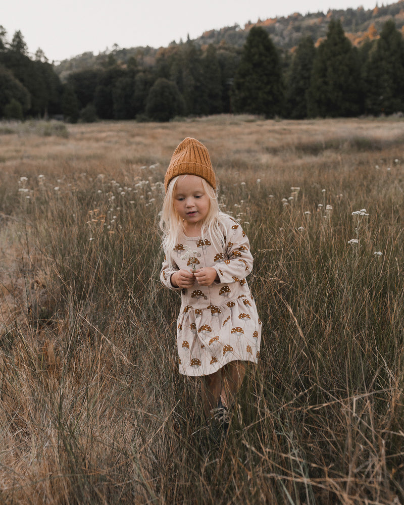 button up dress || mushroom - Rylee + Cru