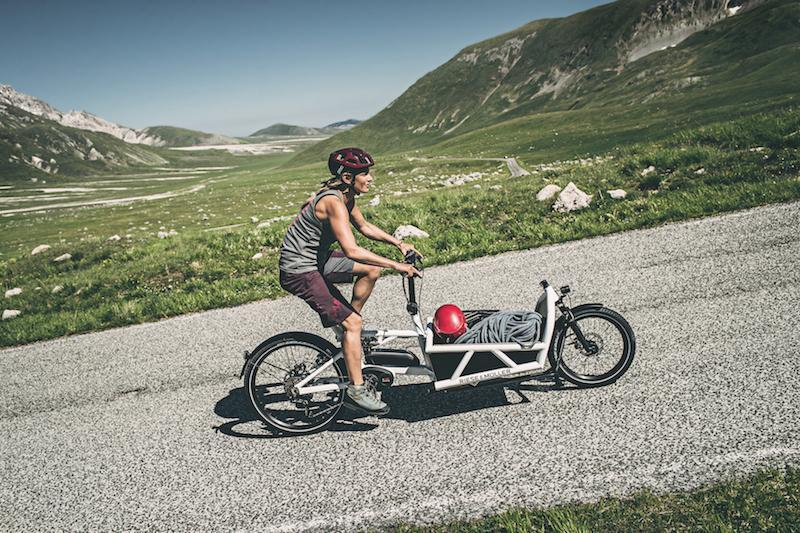 Riese & Muller Load 60 cargo electric bike