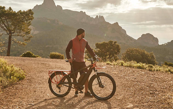 Riese & Muller Multicharger Cargo e-Bike