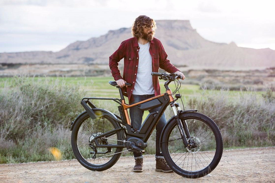 Riese Und Muller Delite Touring electric bike Bosch dual battery